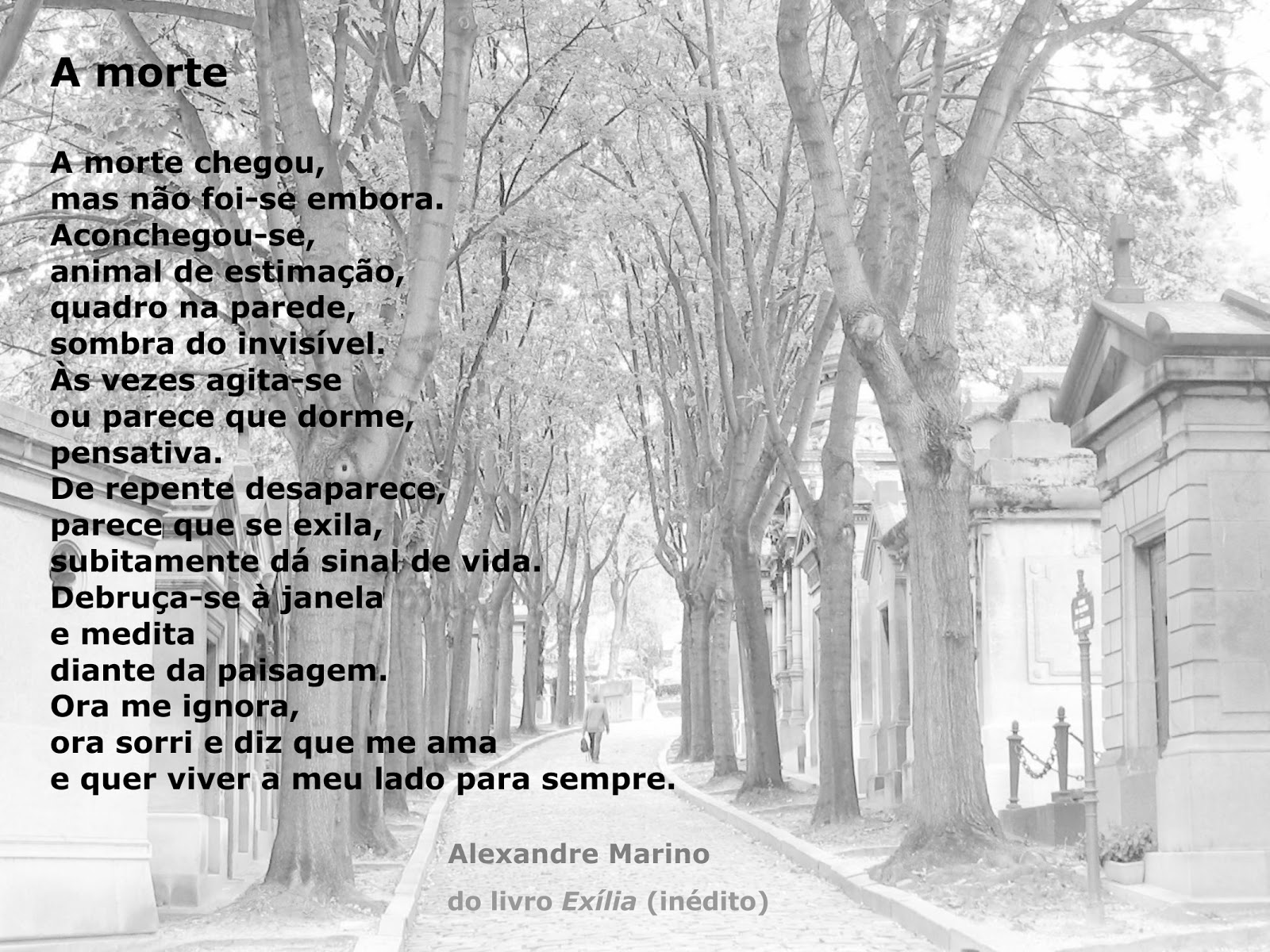 Top Poesia Nômade: [poema] A MORTE IY37