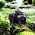Nikon, Canon, Fuji, Sony... Notizie flash