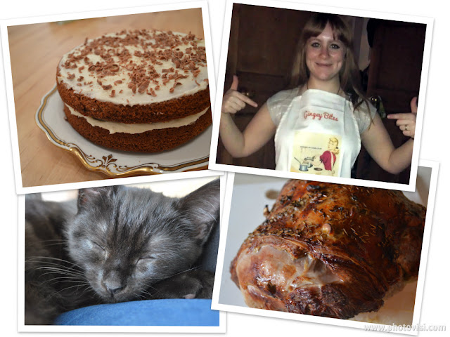 Gingeybites new year cake, kitten and apron
