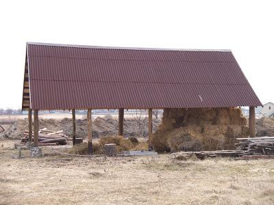 полтава. Потолок из сборных двутавровых балок под соломенный утеплитель.