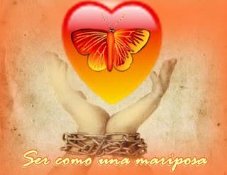 Querido, puedes ser como una mariposa que vuela libremente sin ningún obstáculo que se interponga, si omites a la resistencia para expresar a los verdaderos sentimientos en tu vida.