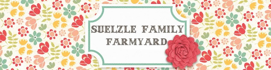 Suelzle Family Farmyard