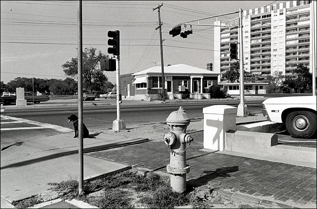 this photographic essay shot