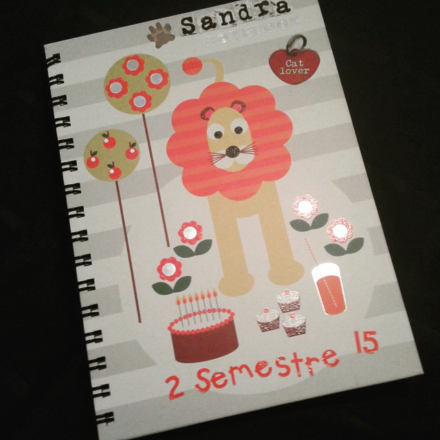 caderninho de organização