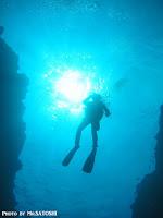 パラオ ダイビング クルーズ ツアー 世界遺産 海外旅行