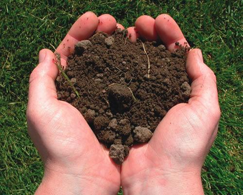Makalah Sumber Daya Alam : Tanah - Indo Info Dan Fakta