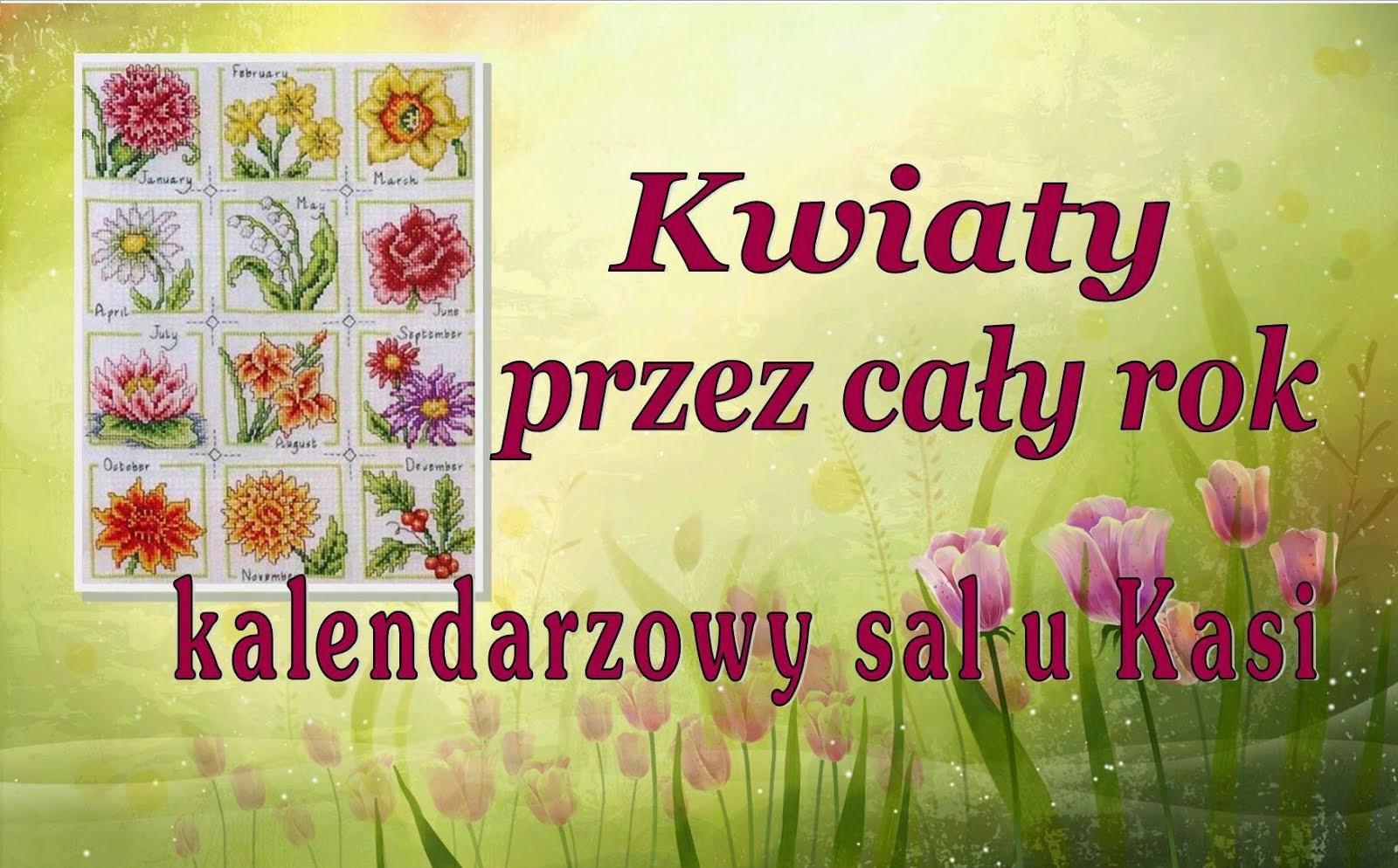 Kwiaty przez cały rok - sal