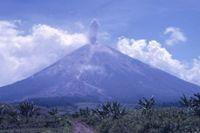 Gunung Argopuro  Survival