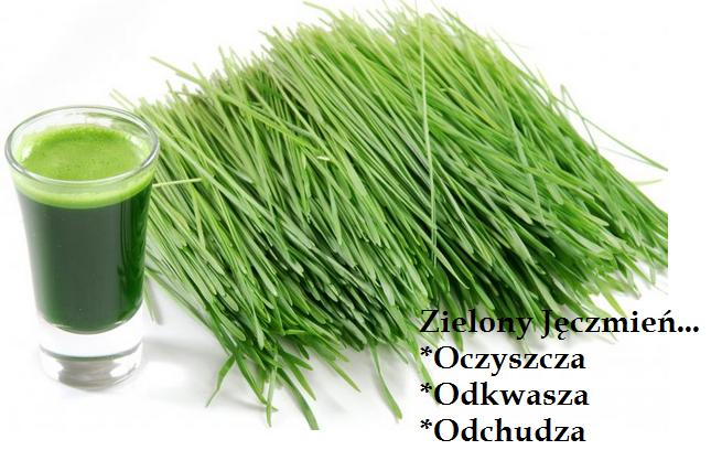 http://zielarnialublin.pl/96,mlody-zielony-jeczmien-pakar-200g.html
