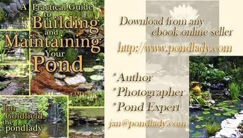 My Pond How-To Book