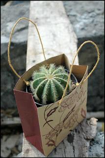 6, Tips, Ampuh, Membuat, Target, Penjualan, kaktus