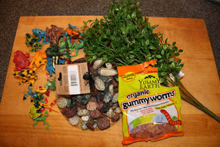 Frog Cake Supplies