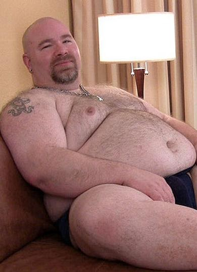 Gordo chubby bear