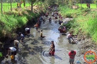 Pintu Air DAM Jambu Desa Sundul Dibuka : Ramai Mencari Ikan