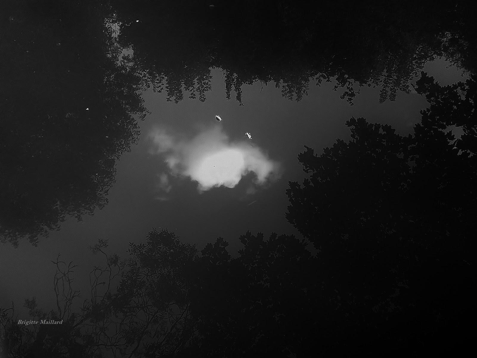 la nuit Monde en poésie