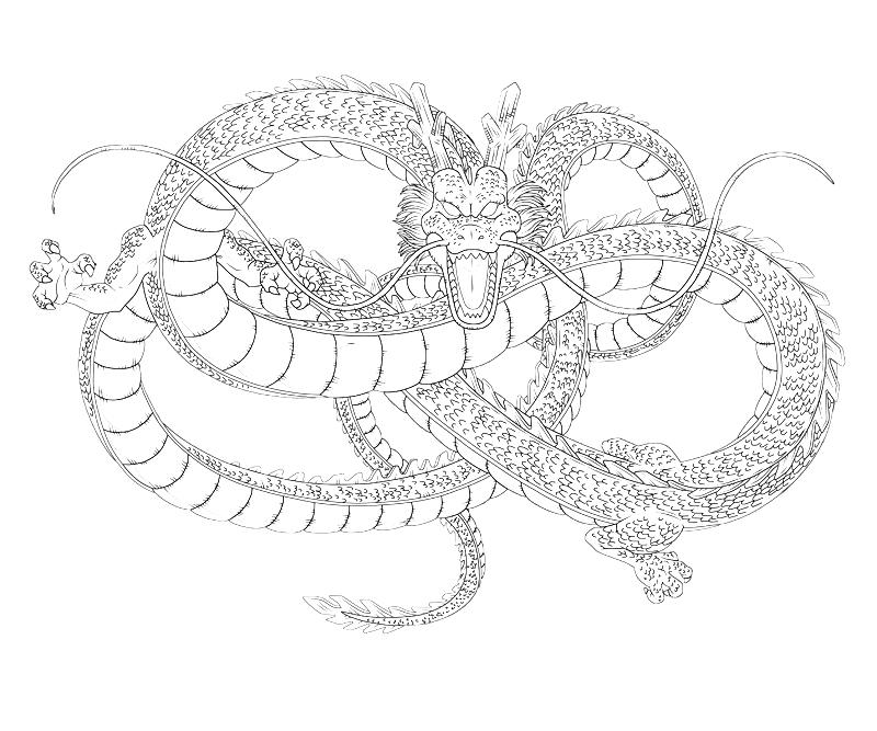 printable-shenron-dragon_coloring-pages-6
