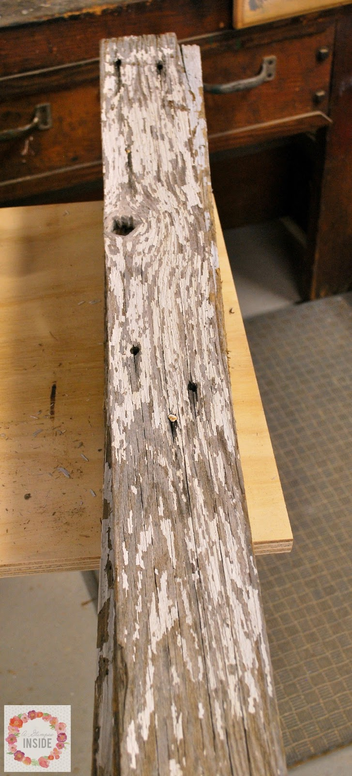 A Glimpse Inside Reclaimed Wood Trees