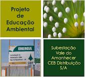 Projeto de Educação Ambiental da Subestação do Vale do Amanhecer CEB Distribuição S/A