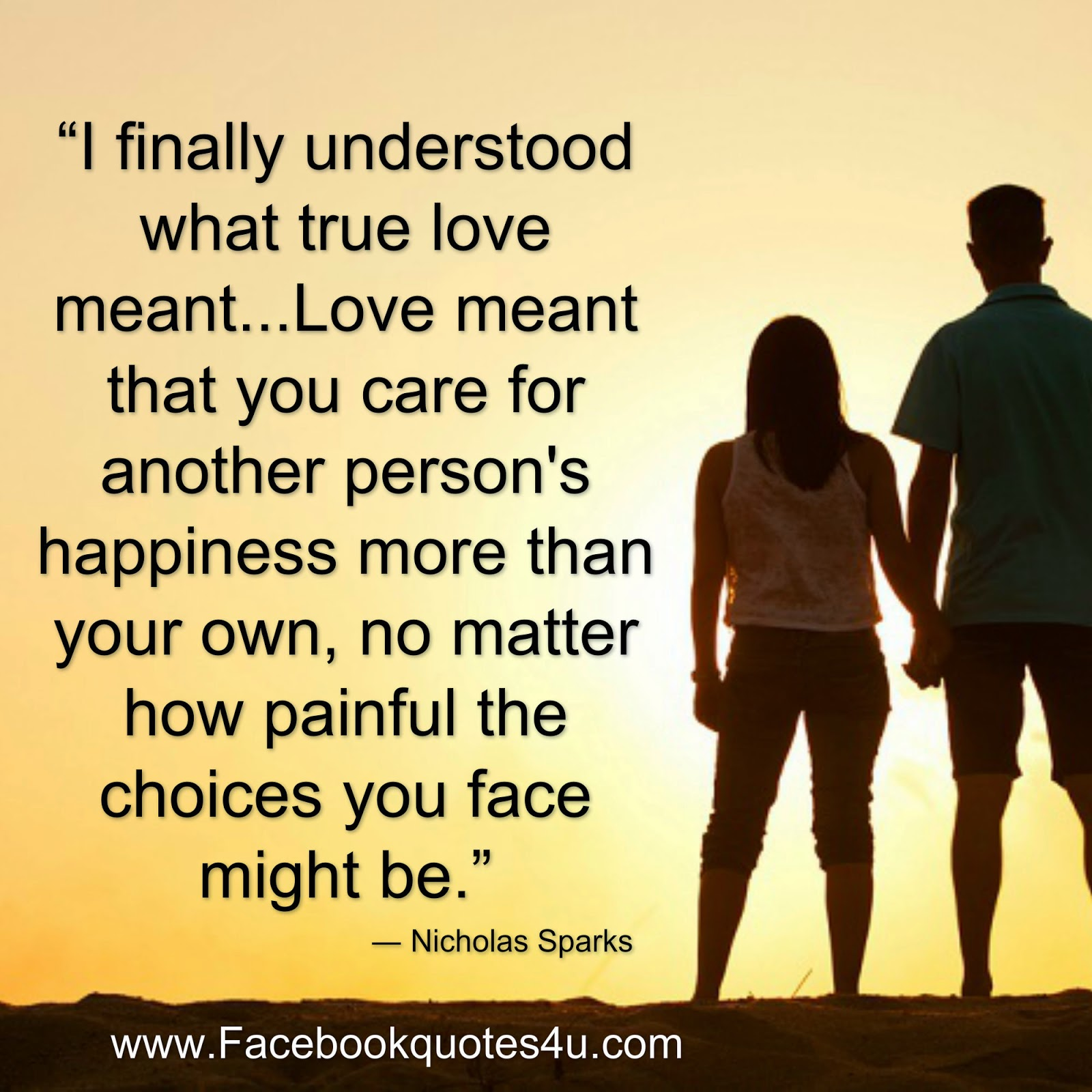 What Is True Love Quotes Mesmerizing Quotes I Finally Understood What True Love Meant