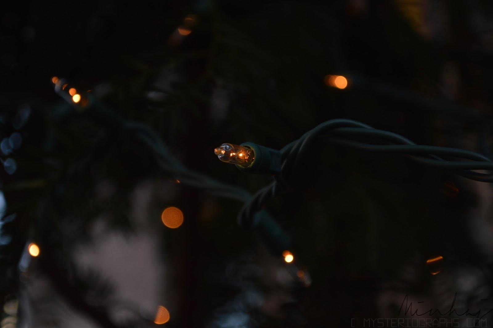Christmas Vibes [1]