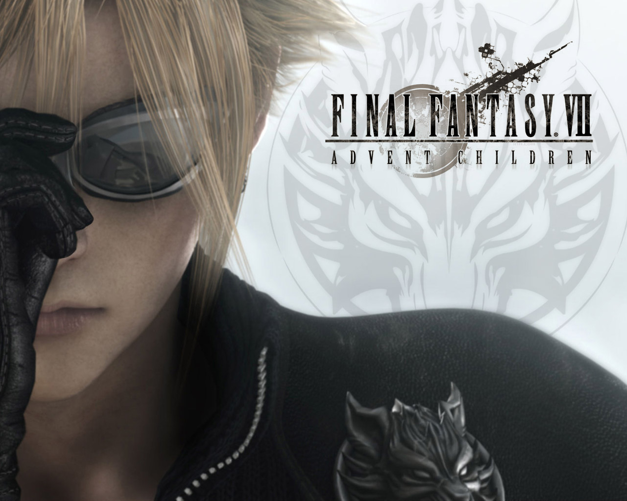 ... the final fantasy vii series this is the 3rd film for final fantasy
