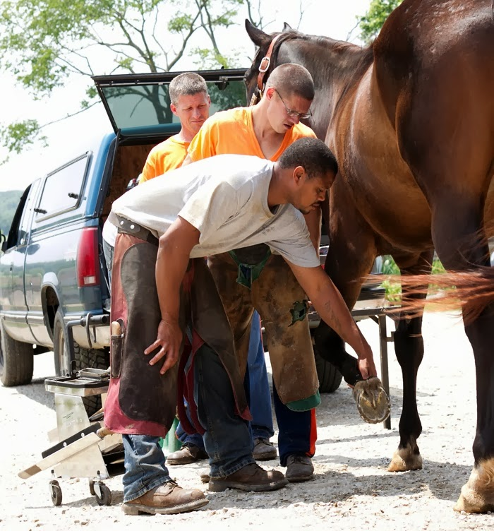 Prison Programs Provide Second Chances For Inmates And Horses.