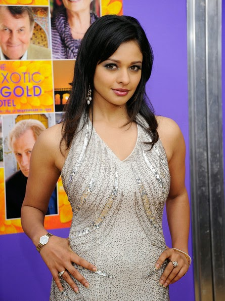 Pooja Kumar in a Silver Yellow Dress Spicy Pics