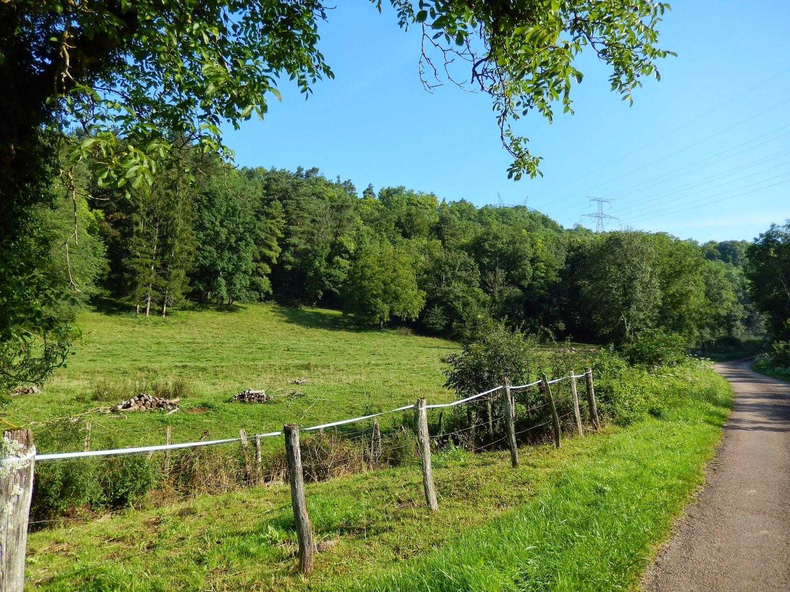 Gissey-sous-Flavigny, vers la forêt
