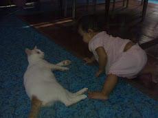 Suka sangat dgn kucing