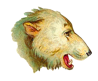 Digital Polar Bear Head Clip Art
