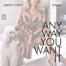 Harvey Stripes ft Jeremih - Any Way You Want It
