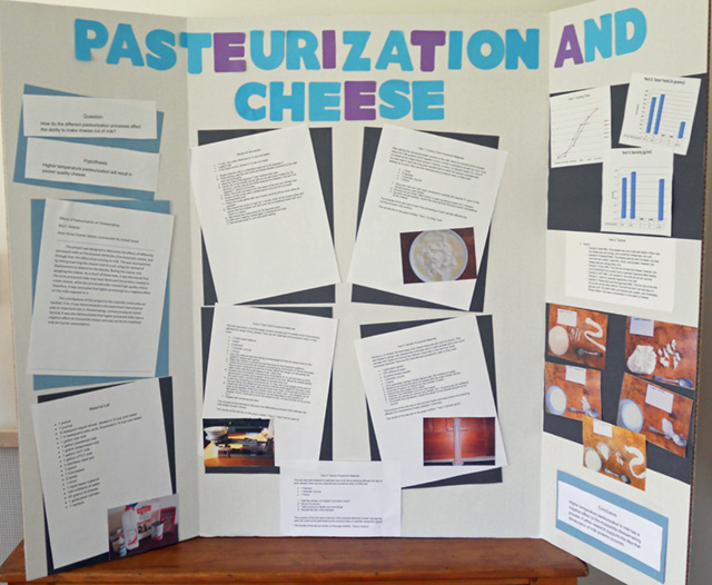 prize winning science fair projects  essay sample  pthomeworkmgdp  prize winning science fair projects