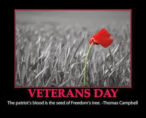 Meaning Veterans Day Quotes Thank You Sayings