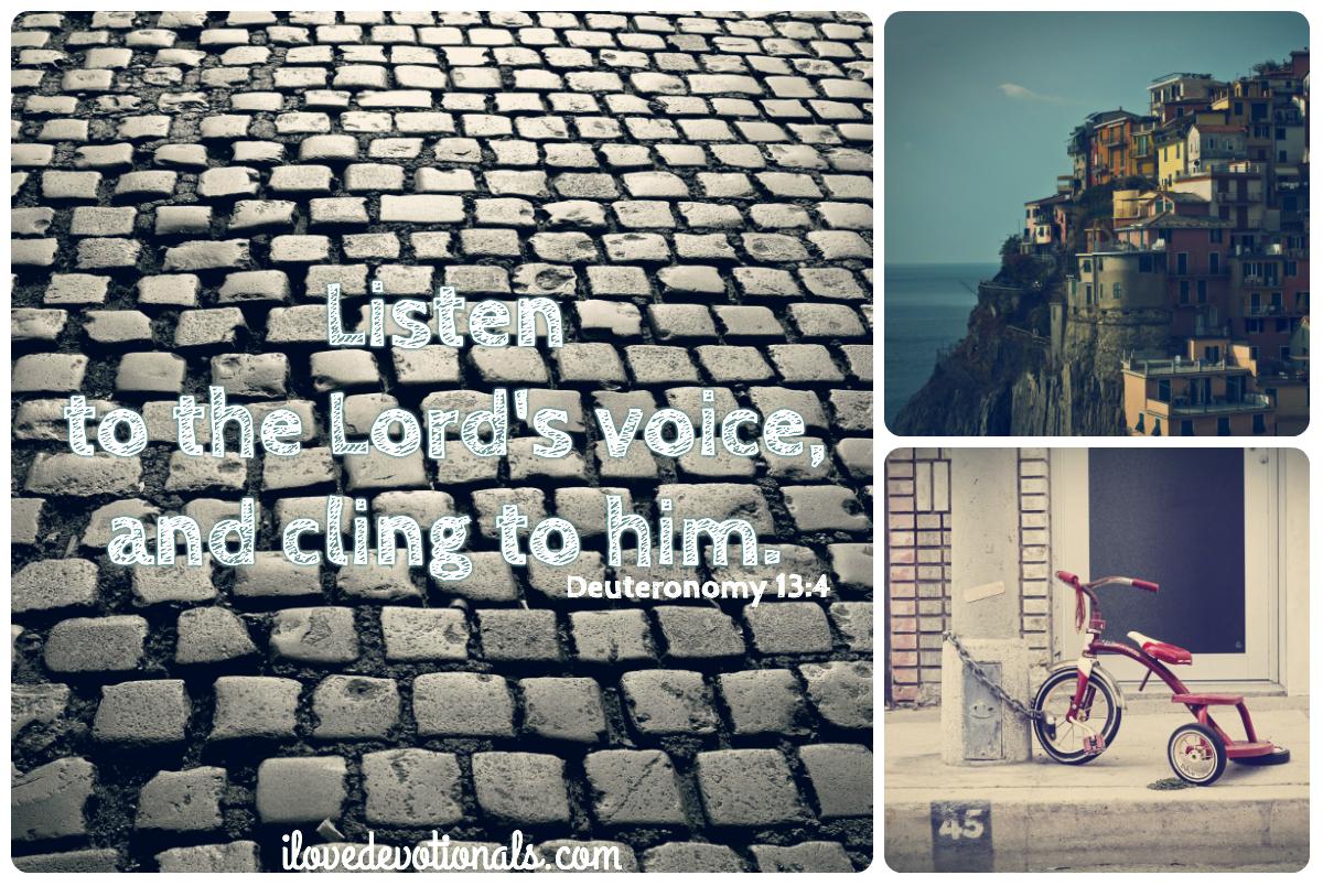bible verse about following God deuteronomy 13:4