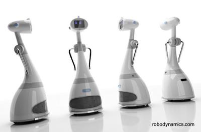 Robots domésticos humanoides