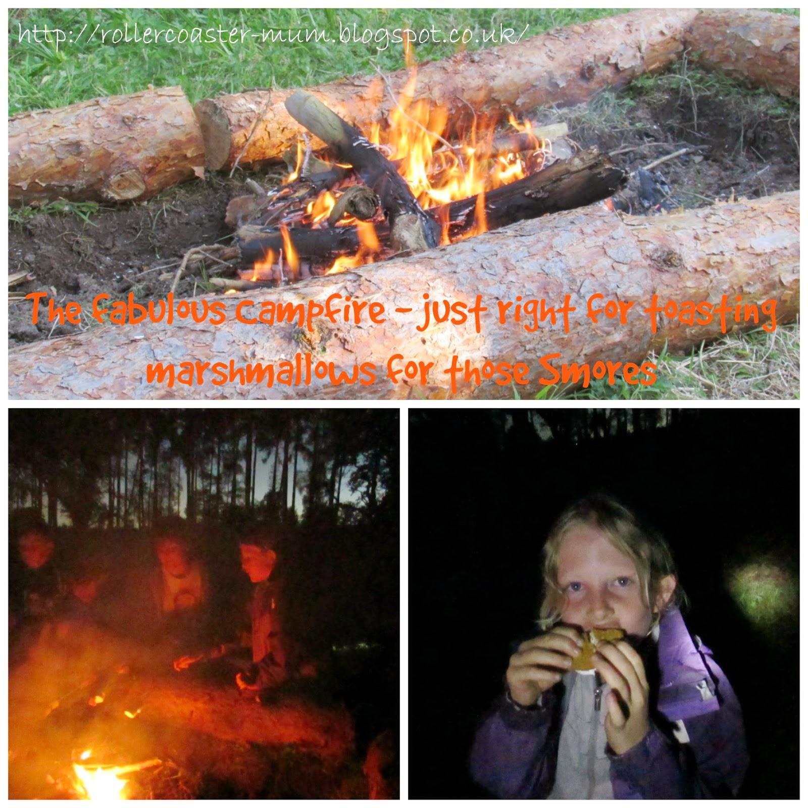 toasting marshmallows, RSPB #BigWildSleepout