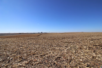 Featured Property FARMLAND AUCTION