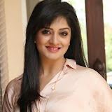Vimala Raman Latest Photos in Jeans at Trendz Life Style Expo 2014 Inauguration 0042