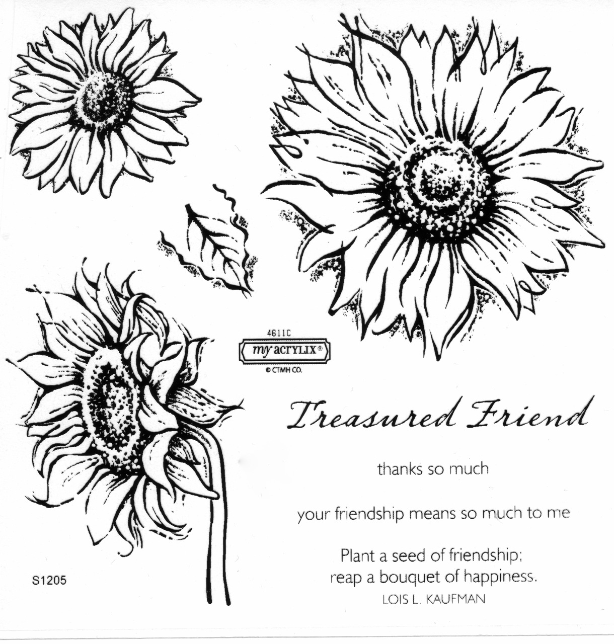 ... Sunflower Life Cycle Worksheet Further Sunflower Life Cycle Printable