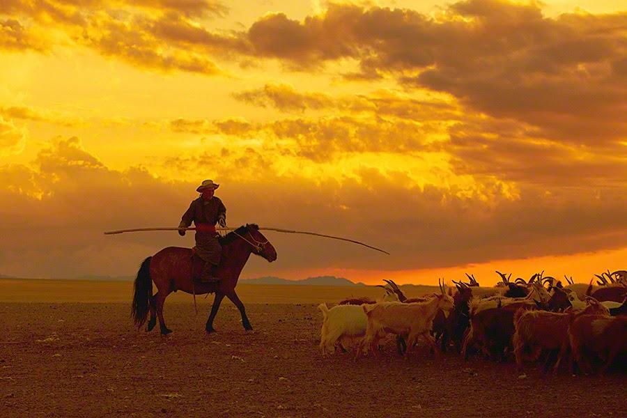 Nomadic Mongolia by Andrew Newey