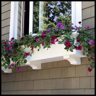 "48 inch window box, 48 inch window boxes, 48"" window box, 48"" window boxes"