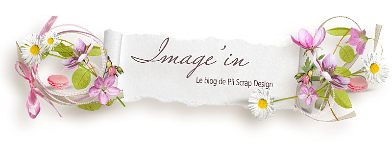 Image'In, le blog de Pliscrap design