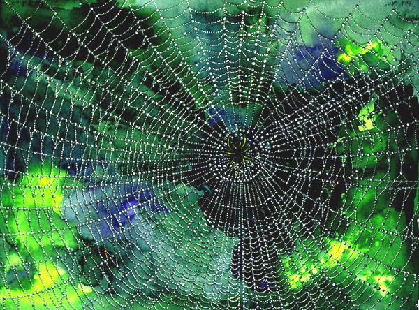 Salt Painted Spider Web - Toddler Approved