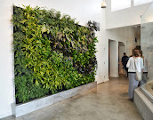 #1 Vertical Garden Ideas