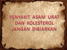 obat herbal asam urat kolesterol darah tinggi