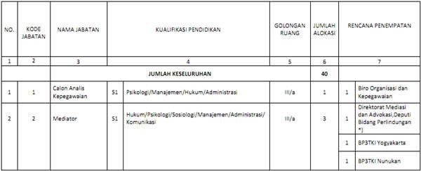 Formasi CPNS 2013 BNP2TKI