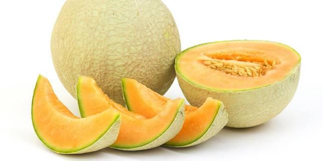 Hasil gambar untuk Kulit buah melon