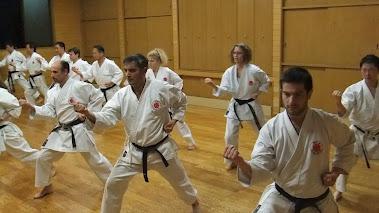 Practicas en el Hombu Dojo