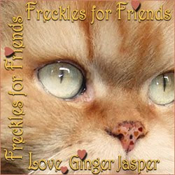 Freckles for Furrends