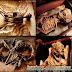 Koleksi Menyeramkan Berbagai Spesimen Aneh dari Merrylin Cryptid Museum